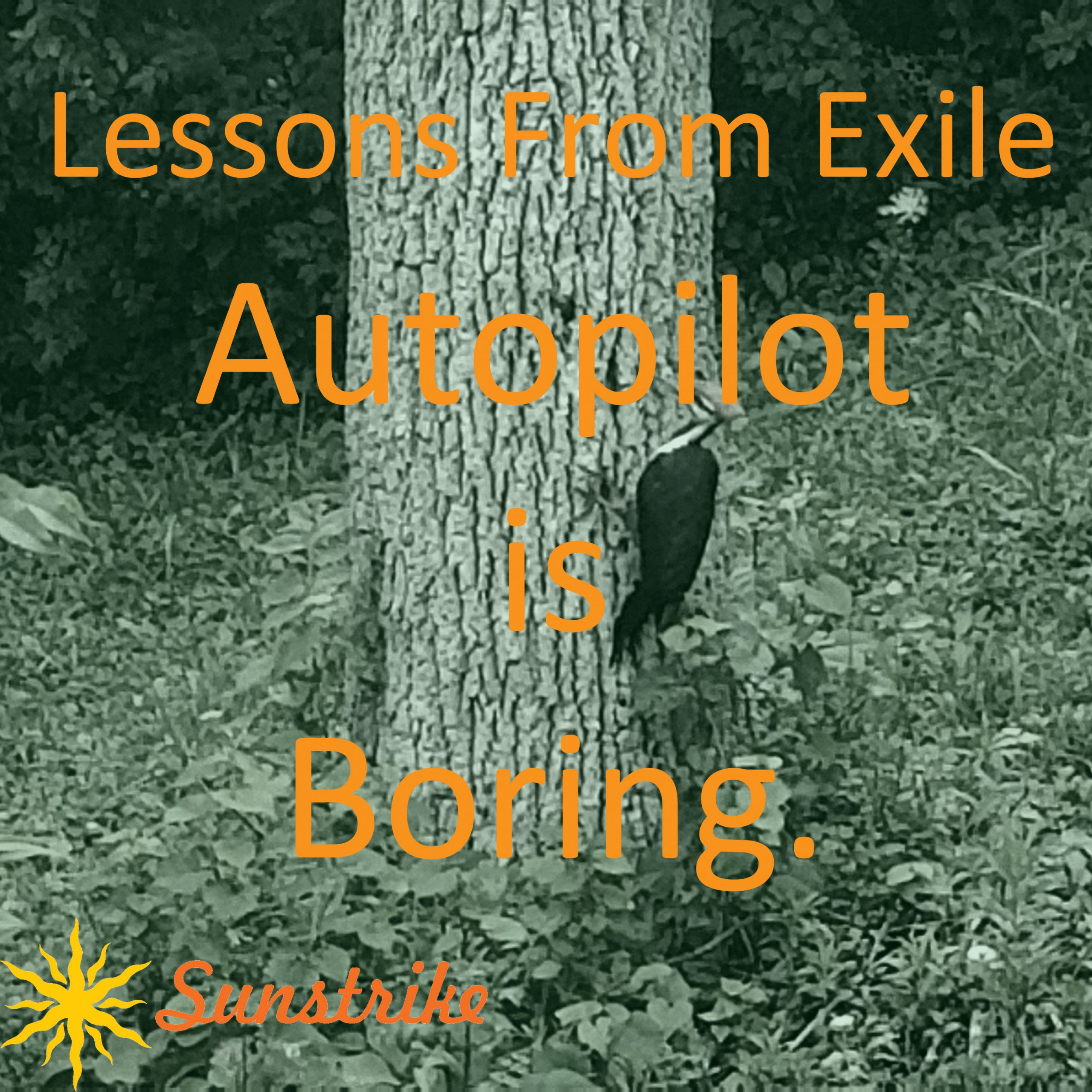 Lessons from Exile #22: Autopilot Is Boring