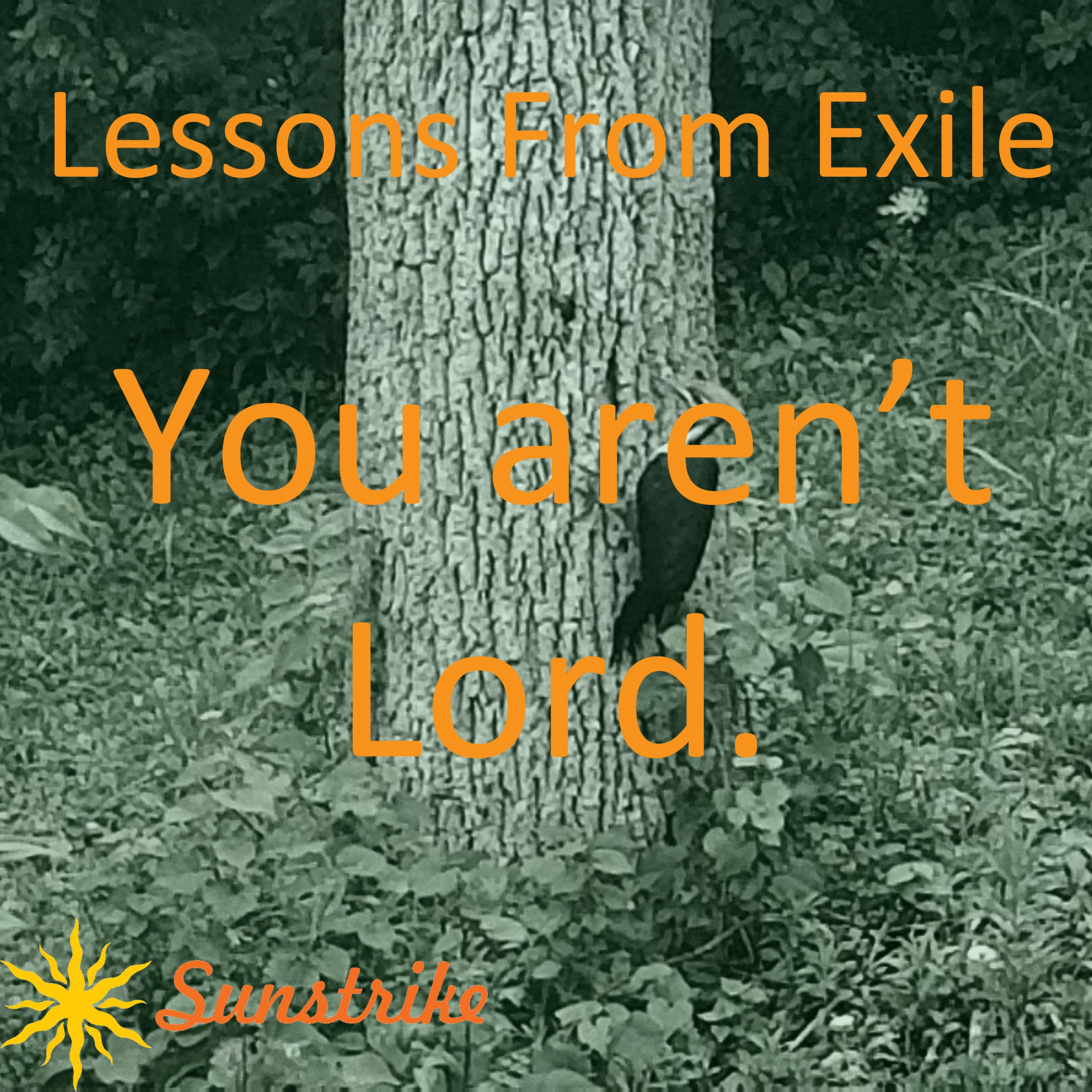 Lessons from Exile #25: You Aren't Lord