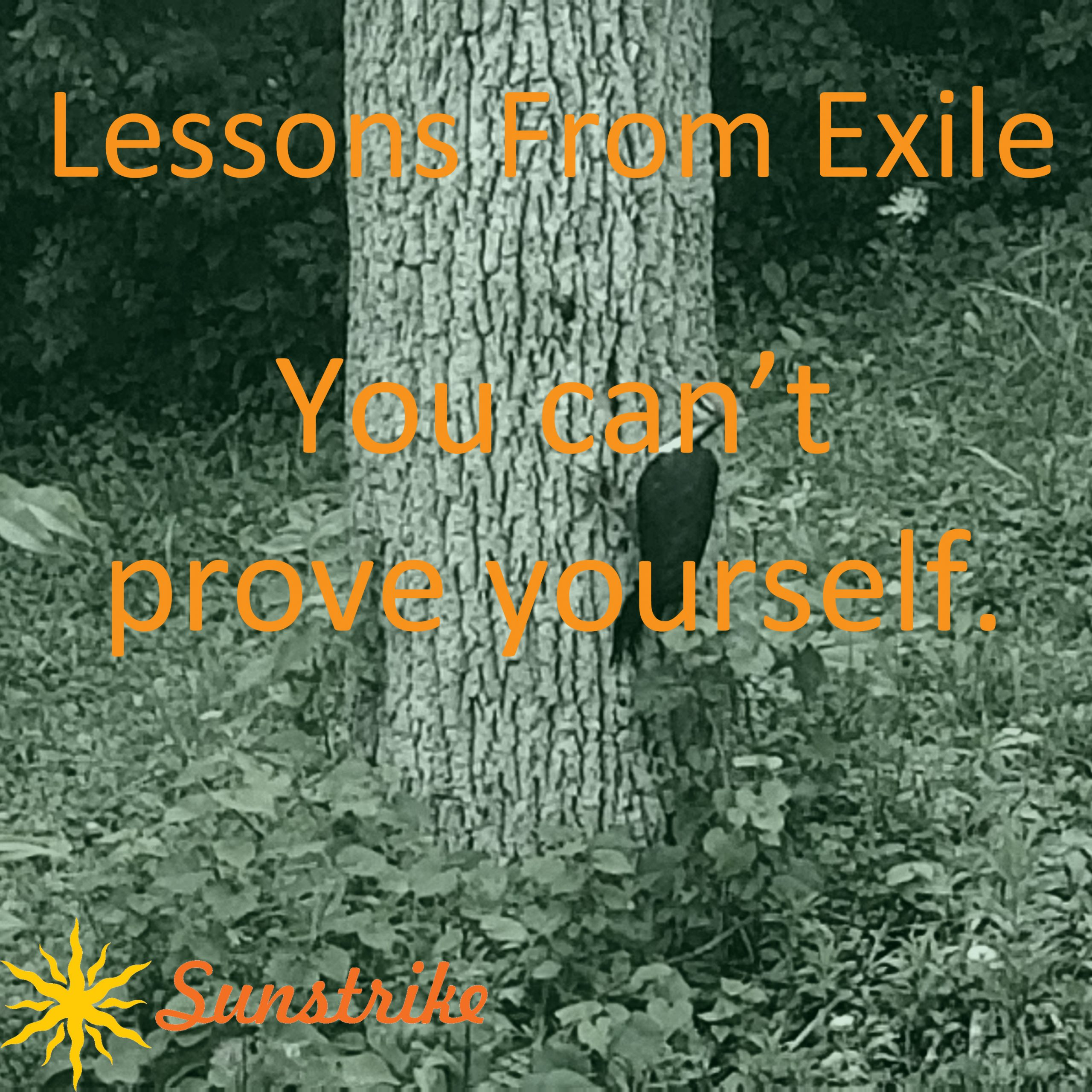 Lessons from Exile #26: You Can't Prove Yourself