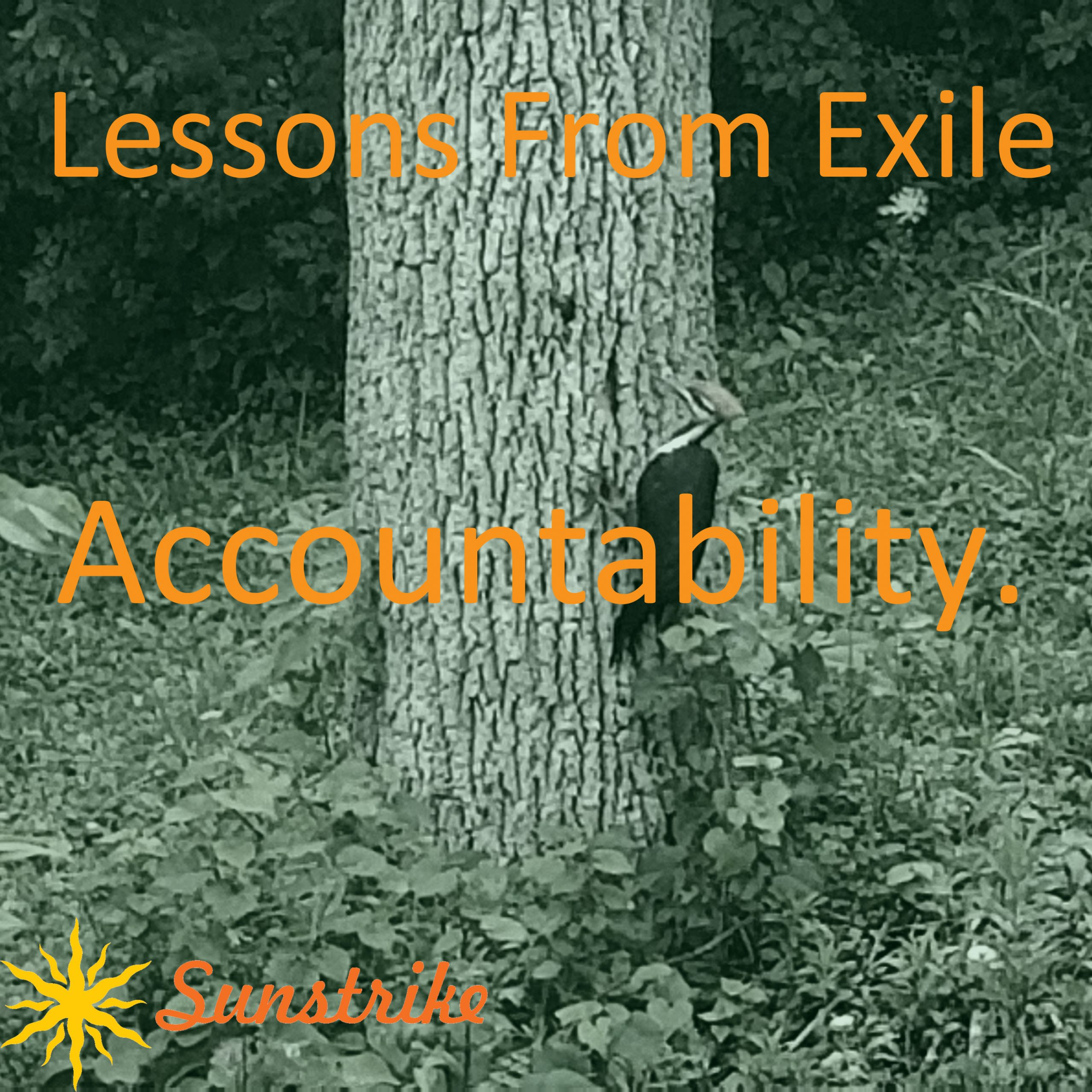 Lessons from Exile #28: Accountability