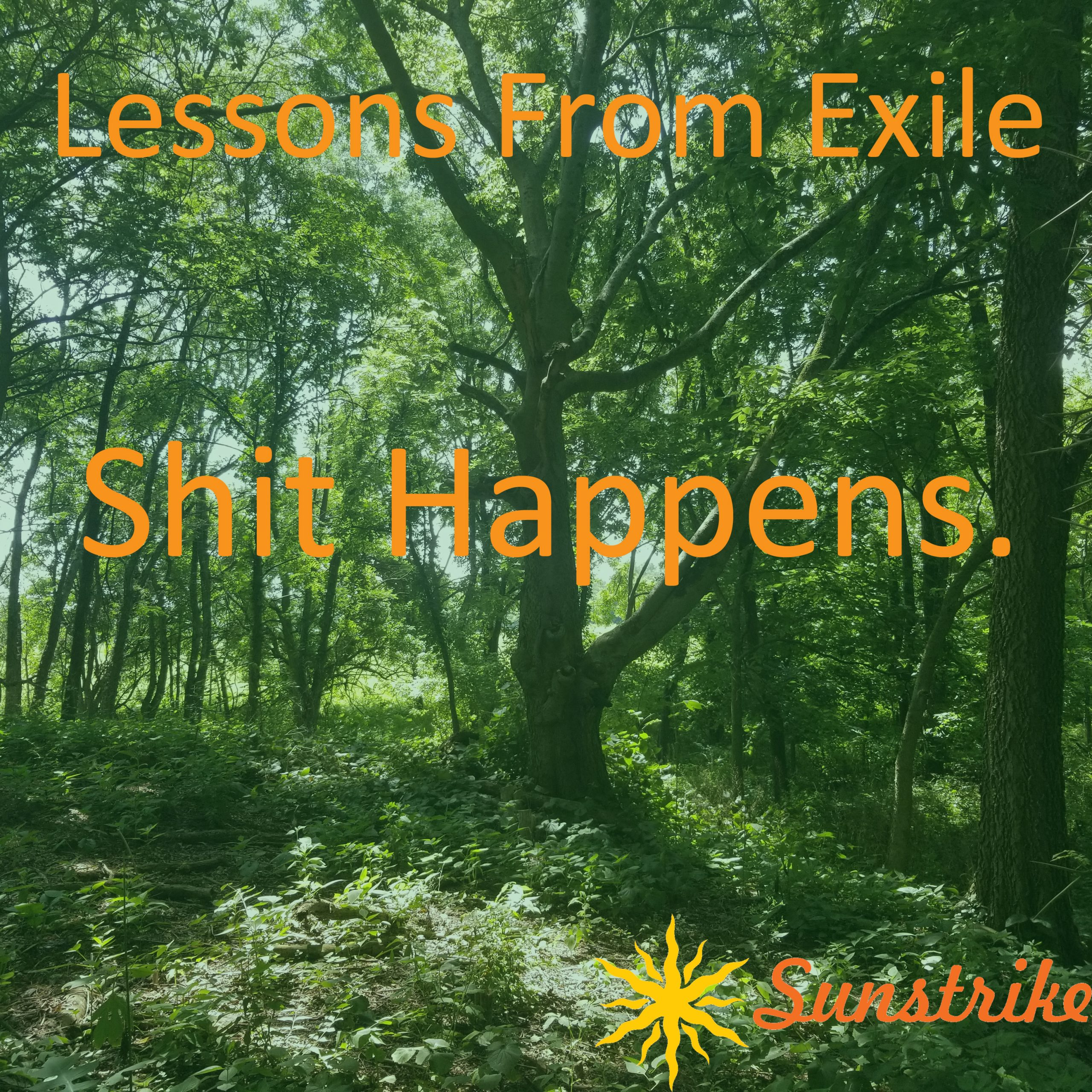Lessons from Exile #32: Shit Happens