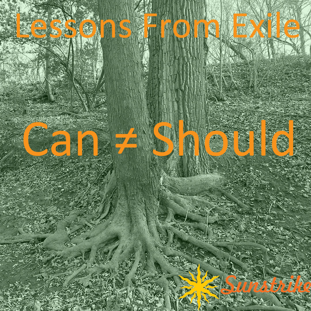 Lessons from Exile #77: Can ≠ Should