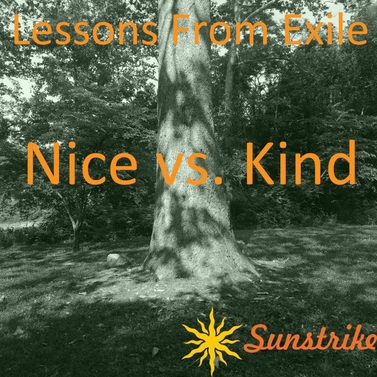 Lessons from Exile #84: Nice vs. Kind